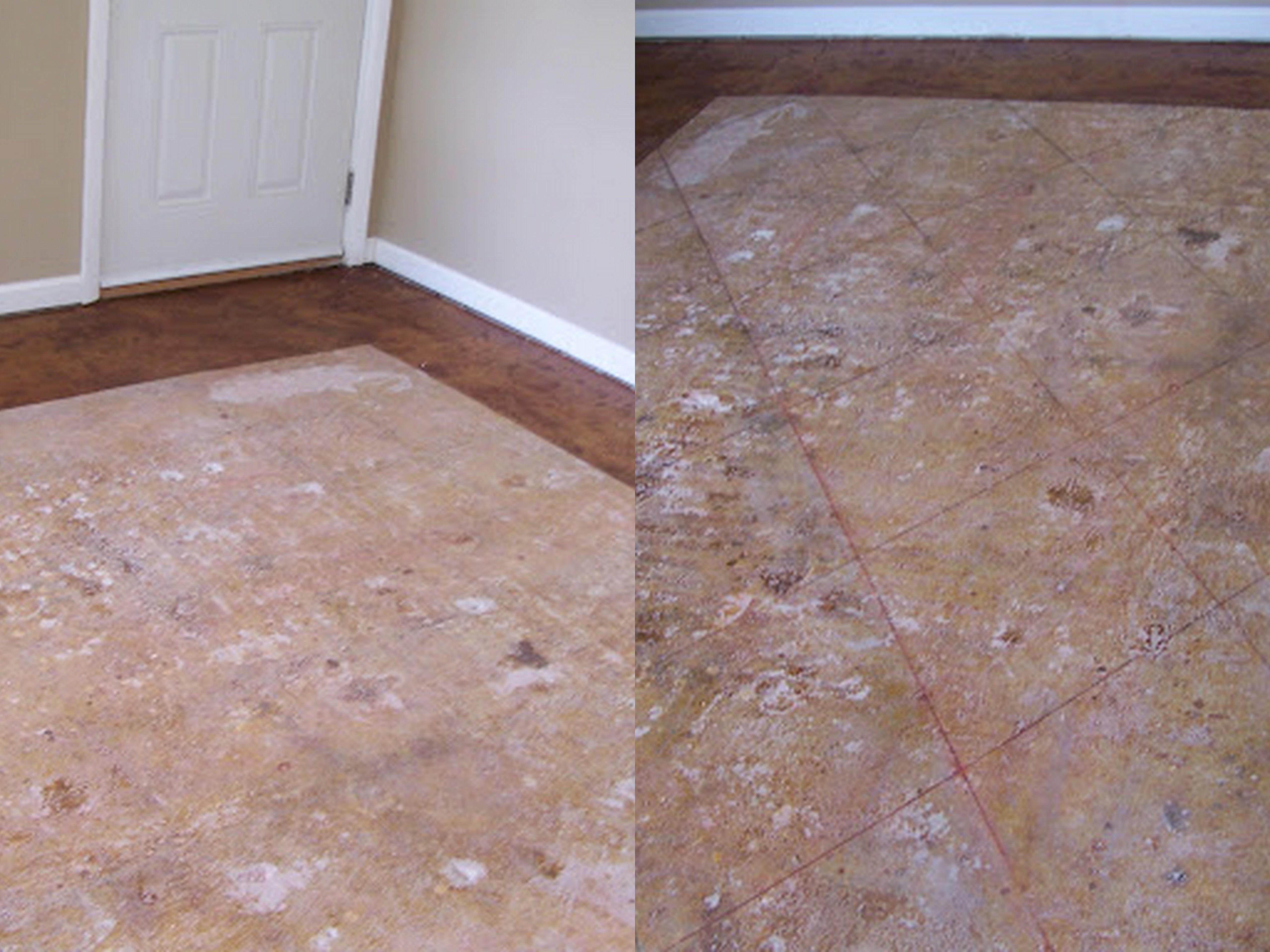Diy Staining Concrete Floors Danitalyn